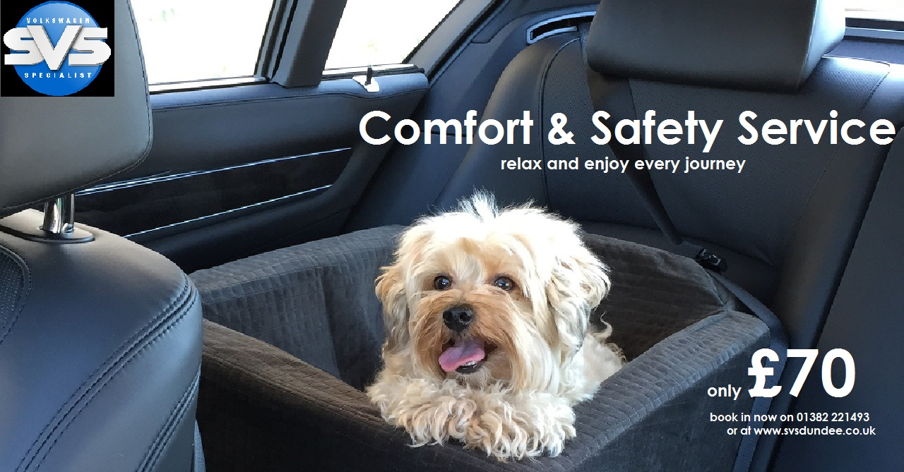 111 dog 2 comfort and safety
